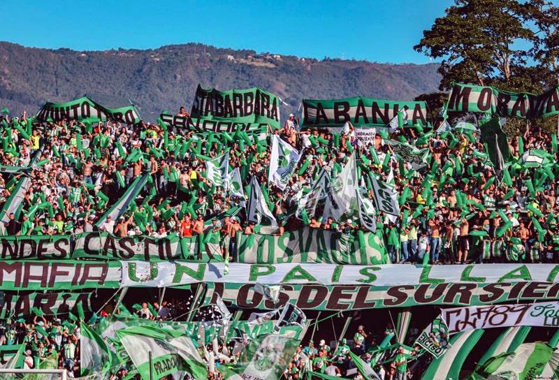 Hinchada Atlético Nacional, Los del Sur, LDS