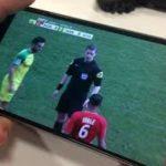 Consejos para ver fútbol en vivo por internet