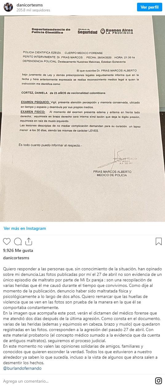Daniela Cortés, dictamen, Sebastián Villa, denuncia