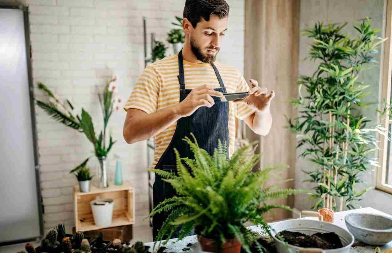 Davivienda y su apuesta por impulsar a las PYME